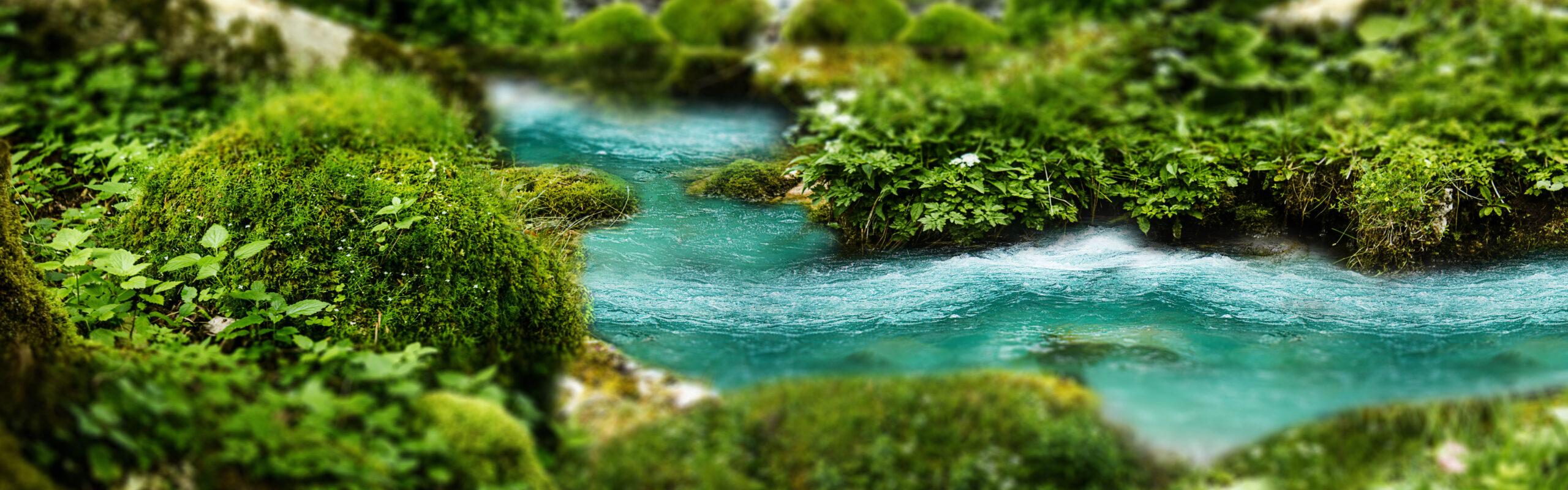 A blue river flows through a bed of green moss